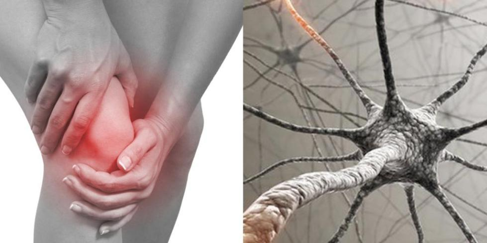 ноцицептивная соматическая боль