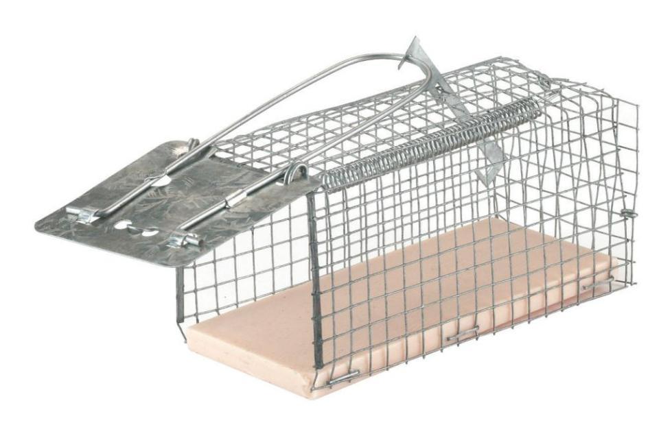 Ловушка для крысы