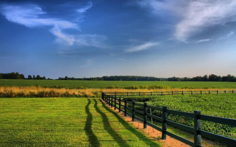 Рациональное использование земельного фонда