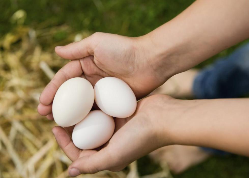 обирать яйца во сне к чему снятся