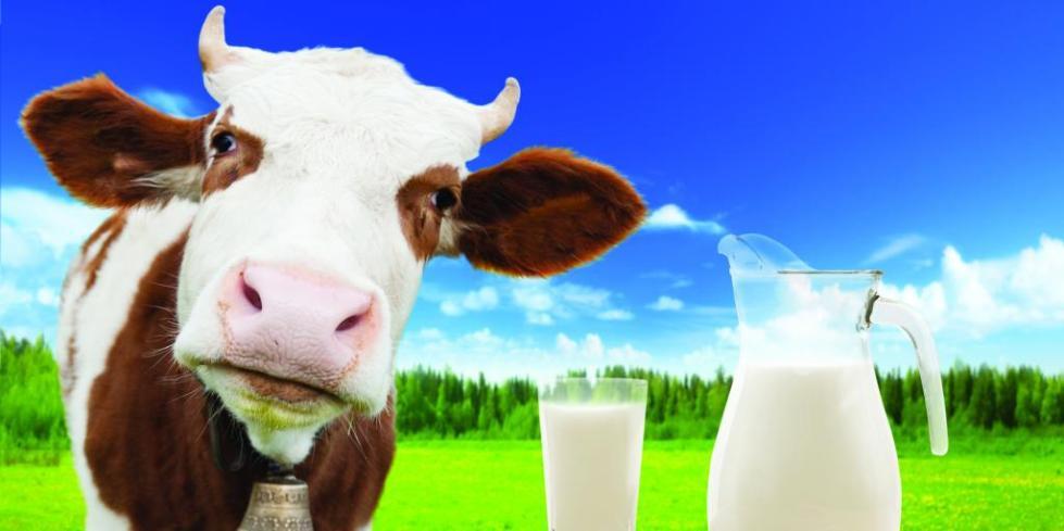 Консистенция молока