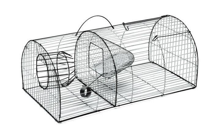 ловушки для крыс и мышей отзывы