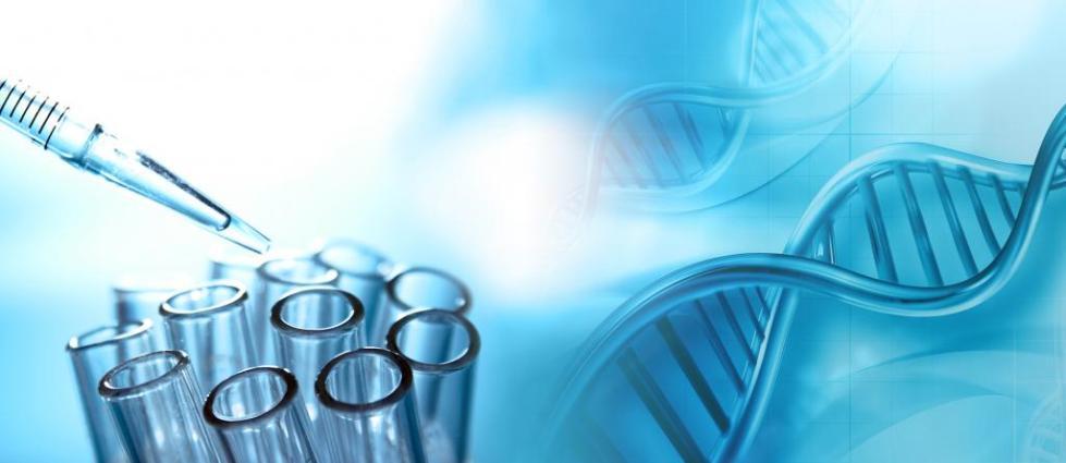 регенеративная медицина и клеточная терапия