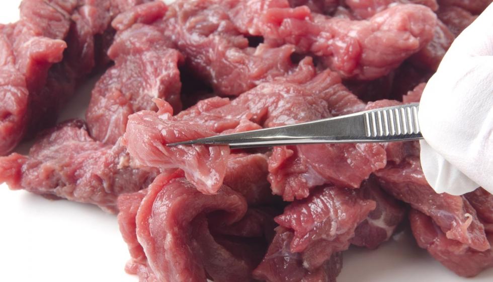 Санитарная экспертиза мяса