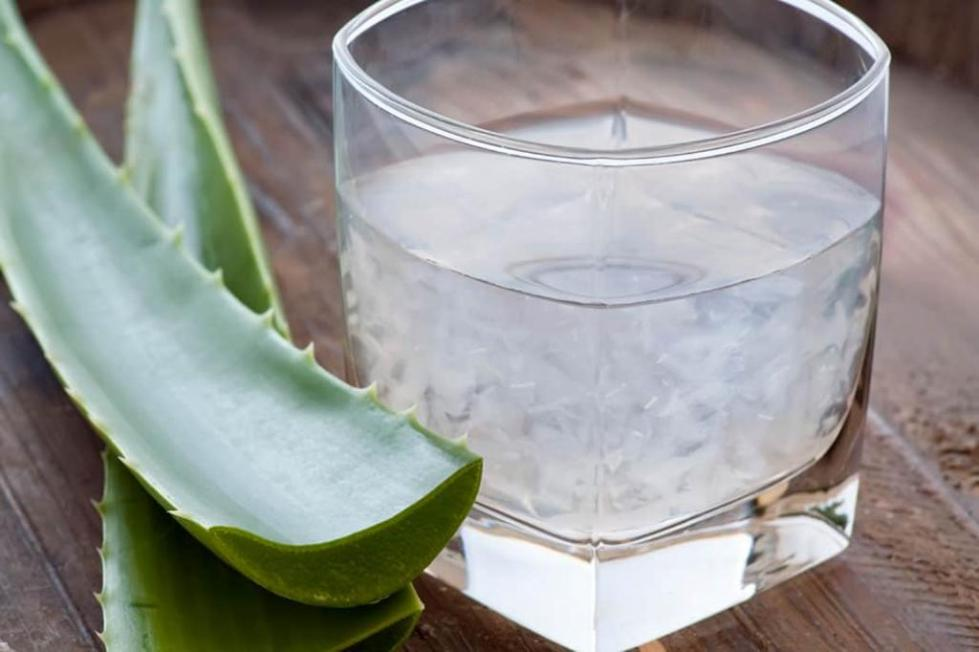 напиток из растения