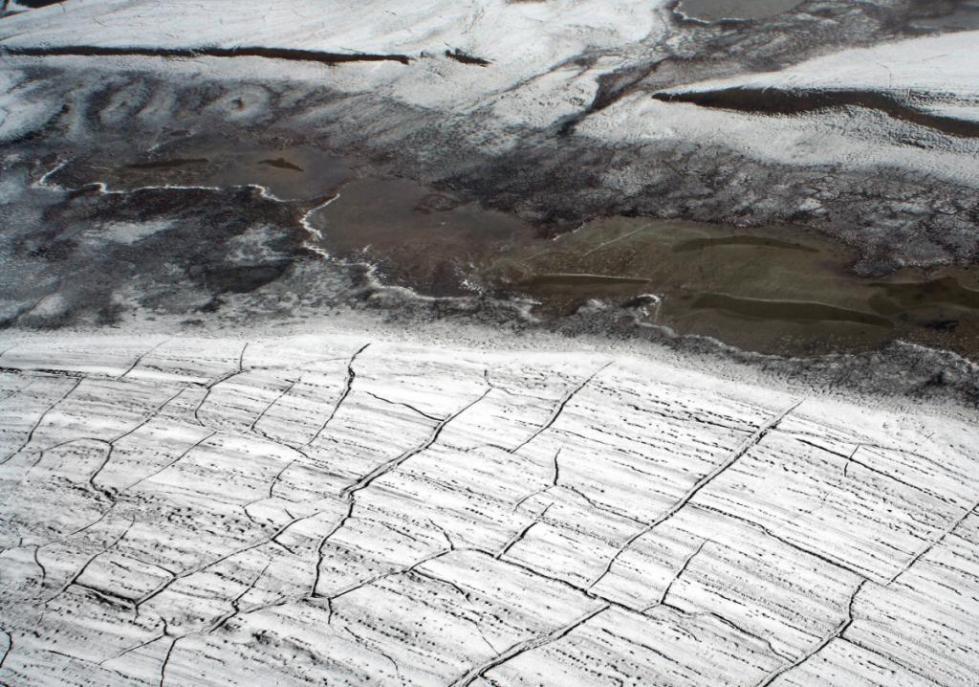 Заледеневшая почва