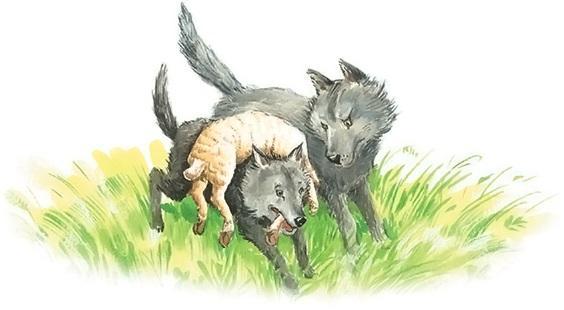 как волки учат своих детей