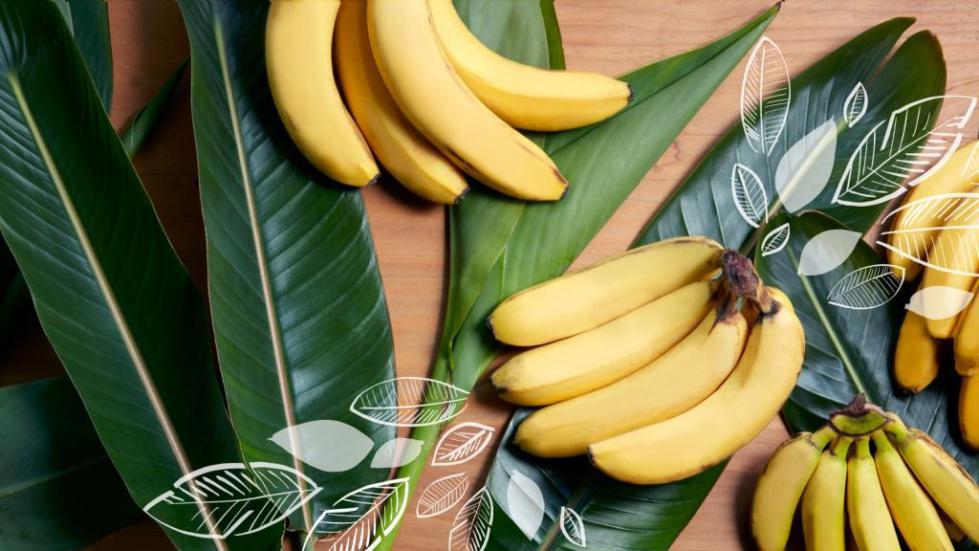 Содержание калия в бананах