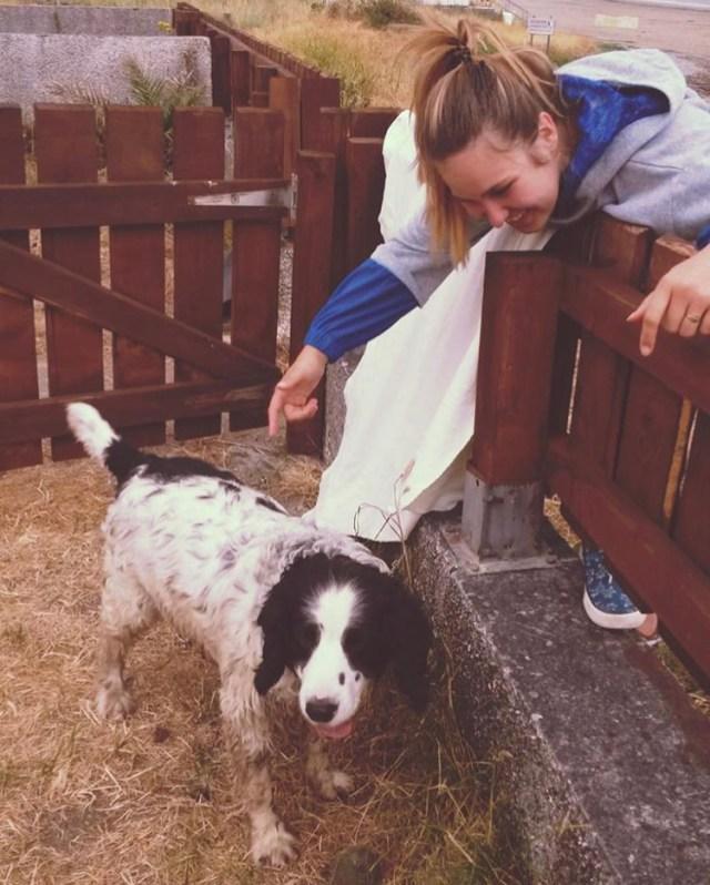 Ich in Irland mit einem tierischen Freund.