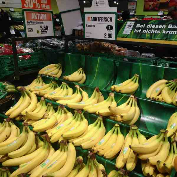 WWF-Bananen in der Migros (Bild: M. Schäfer, Textrakt)