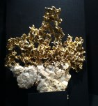 Filigranes Gold