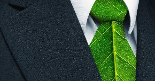 Webinars de empresa y medioambiente