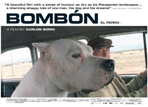 Bombón und Coco auf der Fahrt durch Patagonien