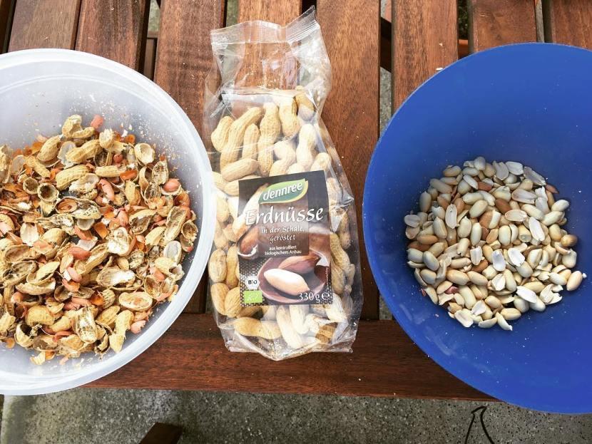 Schälen der Erdnüsse