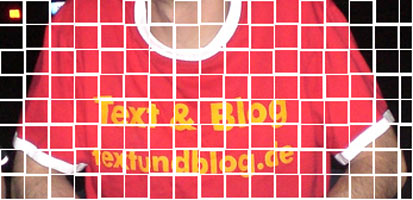 Text & Blog-Shirt