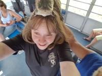 Alligator on da head