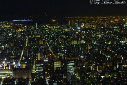 skytree night view 4 copy