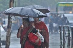MP : इन जिलों में आज भारी बारिश के चेतावनी