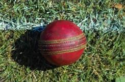 गौमांस पर प्रतिबंध से क्रिकेट प्रेमियों की चिंता बढ़ी !