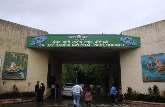 sanjay-gandhi-national-Park-Borivali-Mumbai-Hindi-News