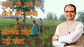 बैल की जगह बेटियों को लगा खेत जोत रखा है किसान