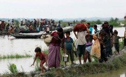 हिंदुओं की मिली सामूहिक कब्र, रोहिंग्या आतंकियों पर आरोप