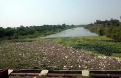 खंडवा: इस नदी की ऐसी हालत देख PM मोदी भी हो जाएंगे नाराज