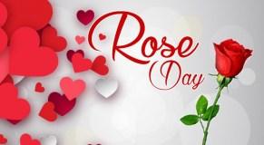 #RoseDay अपने चाहने वालों के साथ इस तरह सेलिब्रेट करें