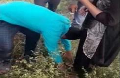 प्रेमिका के हाथों प्रेमी को चप्पलों से पिटवाया, VIDEO वायरल
