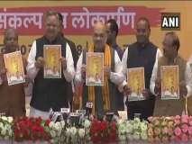 छत्तीसगढ़: अमित शाह ने जारी किया भाजपा का घोषणा पत्र, किए ये वादे