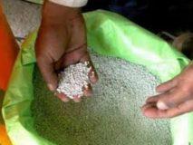 मध्य प्रदेश में अमानक खाद को लेकर राजनीति शुरू