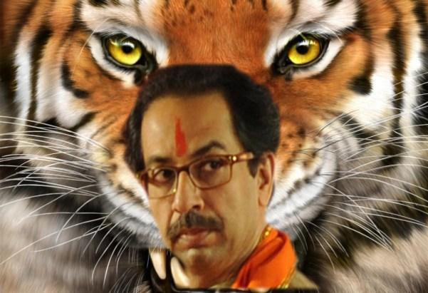 udhav thakre tiger