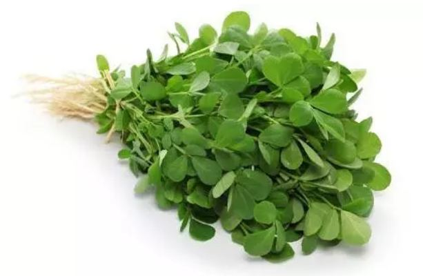 Eating-green-fenugreek-can-eliminate-this-4-problem