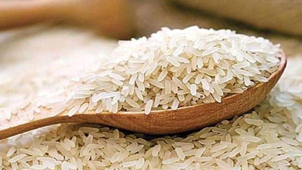 703413-rice