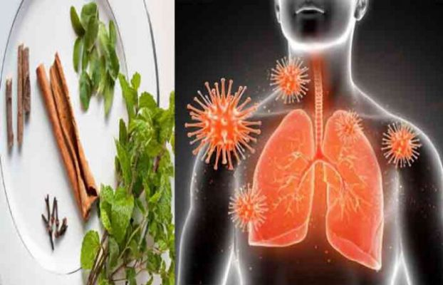 Tulsi-strengthens-the-lungs-boost-your-immunity-system-with-these-4-things