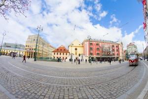 ABRICOS  в Праге