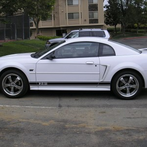 Side Stripes – 1999-2004 Ford Mustang / GT 99-04 – Stripe Kit