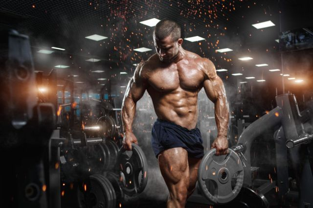 Correct Energy Pathway for Fat Loss and Muscle Gains