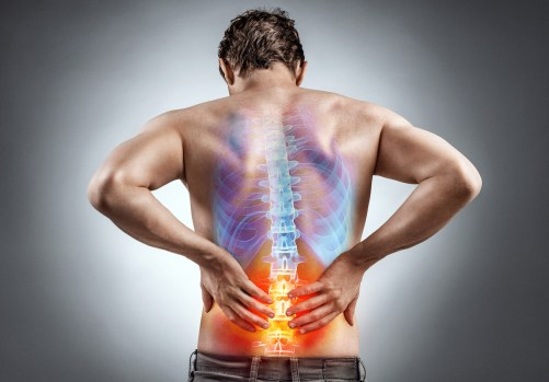 Back Pain - Best Exercises to Improve and Prevent Back Injuries