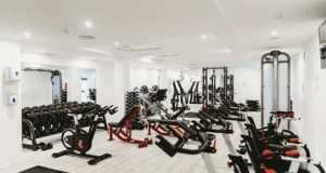 ab workout gym equipment