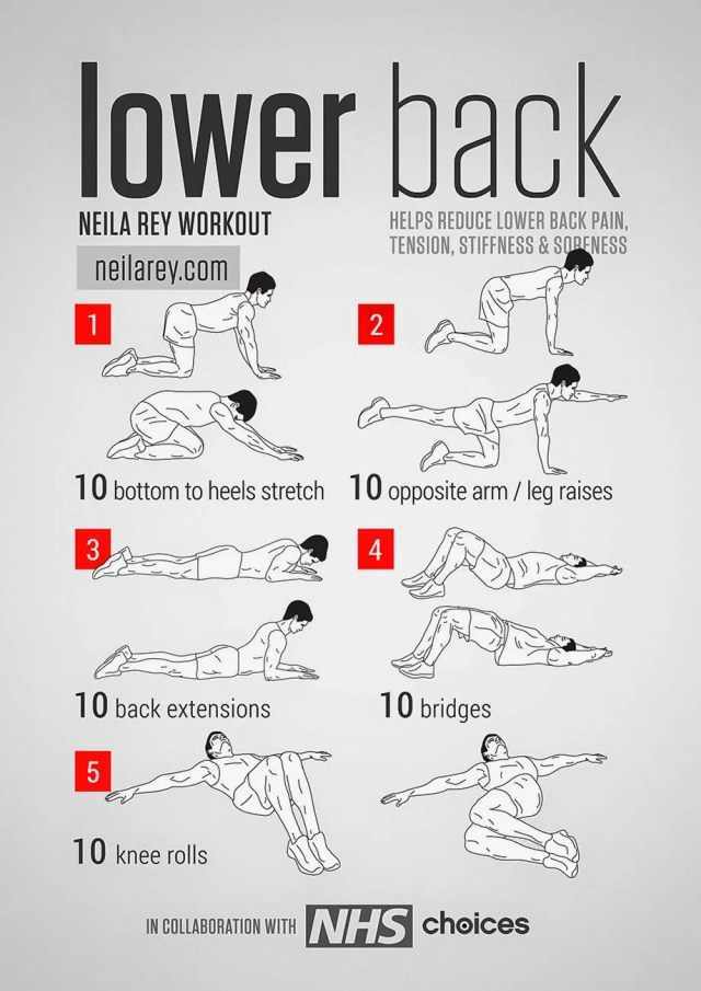 Best Lower Back Stretches