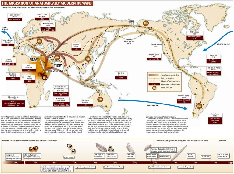 The Migration of Modern Humans