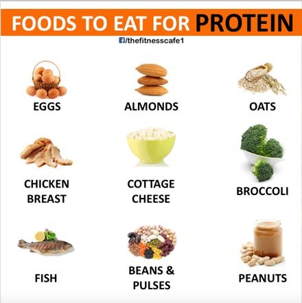 Foods to Eat: Protein
