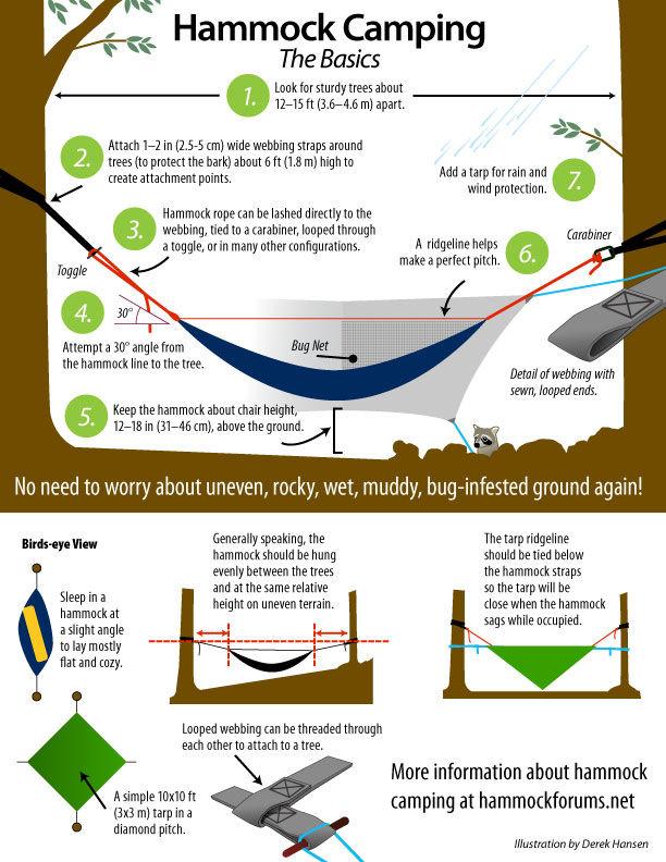Hammock Camping: The Basics