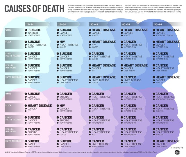 Number 1 Causes of Death in Each Age Group