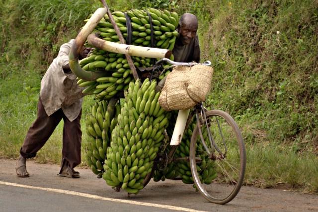 Banana-bike
