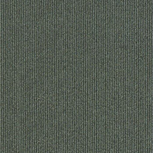 Pinstripe Sequoia