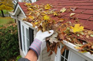 Person removes leaves collected in gutter during fall
