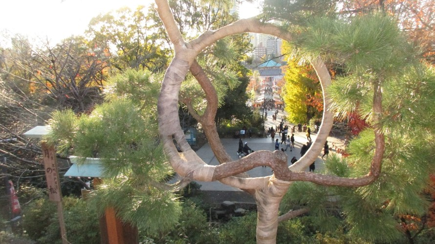 Asakusa and Ueno Park tours on December 22