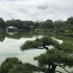 Tokyo Now#15: Why not spend an autumn holiday strolling at a Japanese garden?